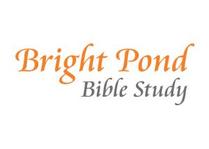 Bright Pond Logo