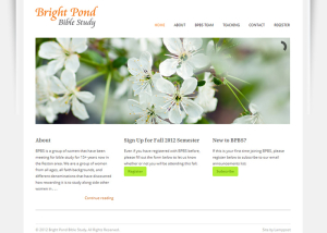 Bright Pond Website