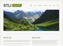 STLI Website